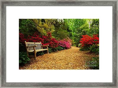Brookside Gardens Framed Print