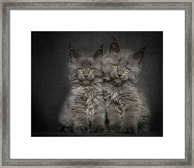 Brother And Sister  Framed Print