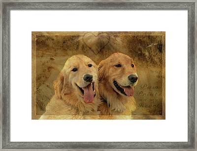 Brotherly Love Framed Print