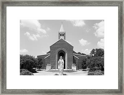 Framed Print featuring the photograph Broush by Cecil Fuselier