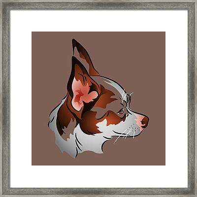 Brown And White Chihuahua In Profile Framed Print by MM Anderson