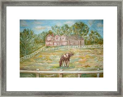 Brown And White Horse Framed Print by Joseph Sandora Jr