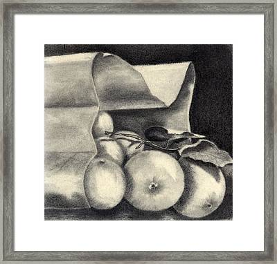 Brown Bag Framed Print by Penny Everhart