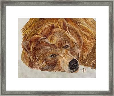 Brown Bear Framed Print by Angeles M Pomata