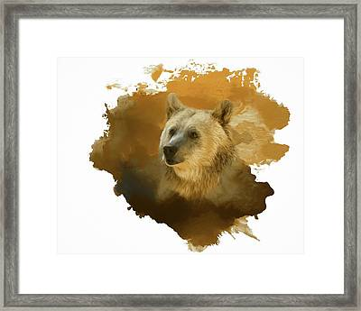 Framed Print featuring the painting Brown Bear by Steven Richardson