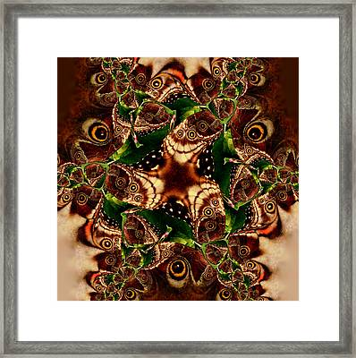 Brown Butterfly Collage Framed Print