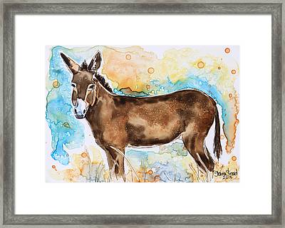 Brown Donkey Framed Print by Shaina Stinard
