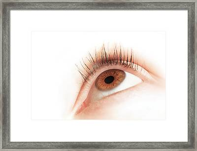 Brown Eye Of A Young Woman Looking Up Framed Print by Michal Bednarek