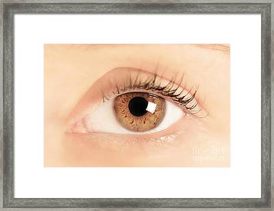 Brown Eye Of A Young Woman Framed Print by Michal Bednarek