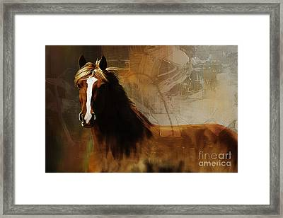 Brown Horse Pose Framed Print by Gull G