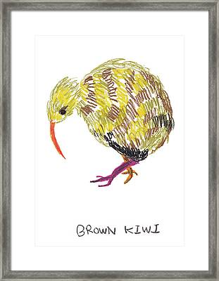 Brown Kiwi Framed Print