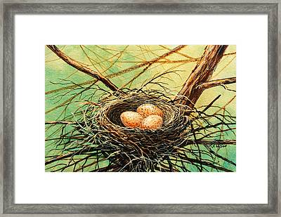 Brown Speckled Eggs Framed Print