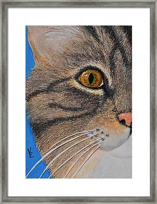 Brown Tabby Cat Sculpture Framed Print by Valerie  Evanson
