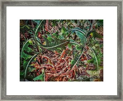 Brown To Green Framed Print by Olga Lyakh