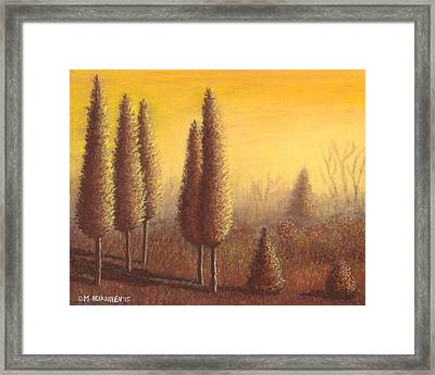 Brown Trees 01 Framed Print