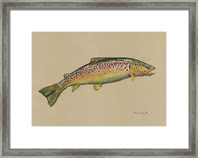 Brown Trout Jumping Framed Print
