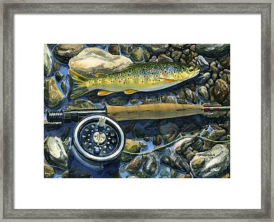 Brown Trout Rush Creek Framed Print