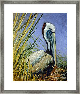 Brownie Nesting Framed Print by Suzanne McKee