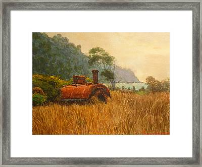 Bruce Bay South Westland Framed Print