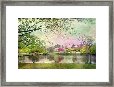 Bruce Park Pond Framed Print
