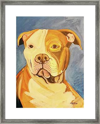 Framed Print featuring the painting Bruiser by John Keaton