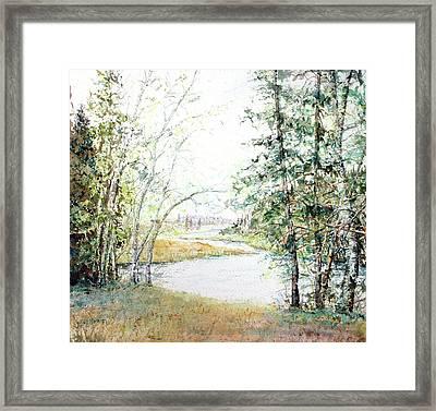 Brule River Framed Print