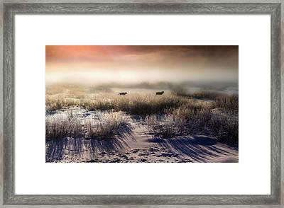 Brumous Willow Bed // Greater Yellowstone Ecosystem Framed Print