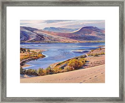 Bruneau Sand Dunes Framed Print by Steve Spencer