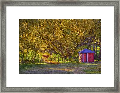 Brunner Organic Family Farm Framed Print