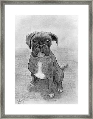 Bruno Framed Print by James Bradley