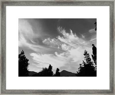 Brush Strokes Framed Print by Russell Keating