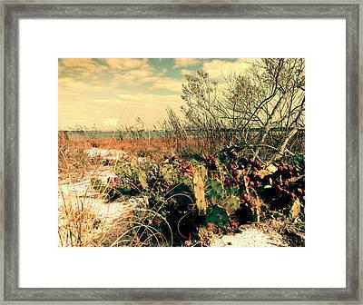 Brush Work Framed Print by Steve Sperry