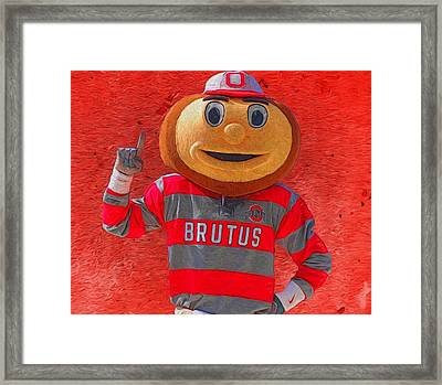 Brutus The Buckeye Framed Print by Dan Sproul