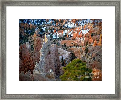 Bryce Canyon Amphitheater Framed Print by Rincon Road Photography By Ben Petersen