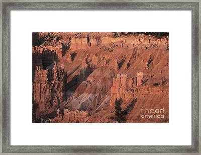 Bryce Canyon At The Golden Hour Framed Print