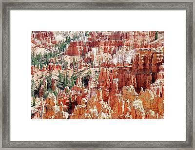 Bryce Canyon Hoodoos Framed Print by Nancy Landry