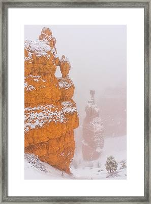 Bryce Canyon In The Snow Framed Print