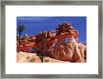 Bryce Canyon National Park Framed Print by Sally Weigand