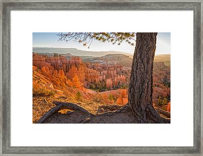 Bryce Canyon National Park Sunrise 2 - Utah Framed Print by Brian Harig