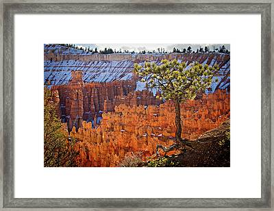 Framed Print featuring the photograph Bryce Canyon by Wesley Aston