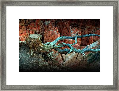 Bryce National Canyon Tree Stump On A Ridge Framed Print by Randall Nyhof