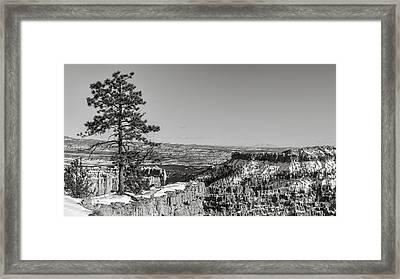 Bryce Sentinel Framed Print