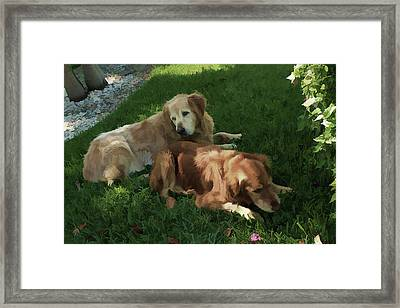 Framed Print featuring the photograph Bubba And Casey by Carol Kinkead