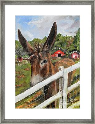 Framed Print featuring the painting Bubba - Steals The Show -donkey by Jan Dappen