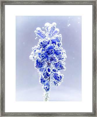 Bubble Blues Framed Print