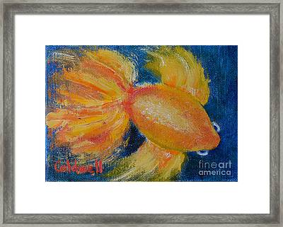 Bubble Eyes Framed Print by Patricia Caldwell