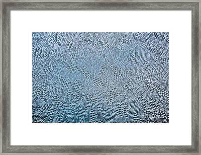 Bubble Glass Dream Framed Print