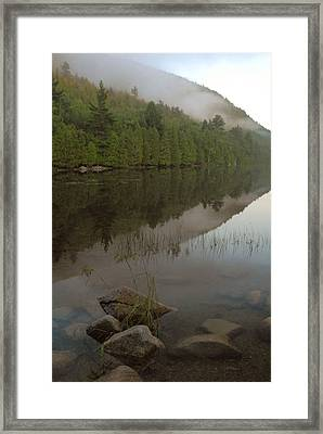 Framed Print featuring the photograph Bubble Pond Reflections by Stephen  Vecchiotti