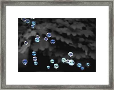 Bubbles Framed Print by Elizabeth Reynders