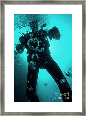 Bubbles Surrounding A Scuba Diver Underwater Framed Print by Sami Sarkis